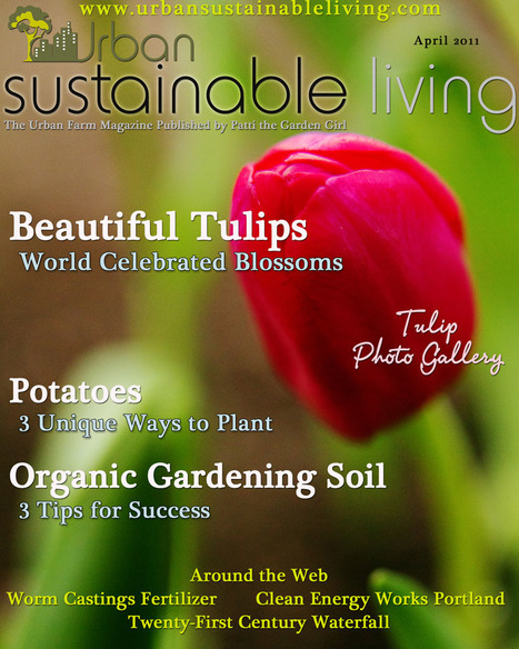 Urban Sustainable Living Magazine   Organic Gardening   Permaculture   Modern Homesteading   Renewable Energy   Green Homes   Compost   Container Gardening   Backyard Chickens   Reduce Reuse Recycle   HomeSustainability   Scoop.it