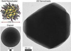 Gold nanoclusters self-assemble to form novel 2D and 3D materials - Materials Today   La revue de presse CDT   Scoop.it