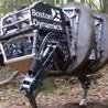 Autonomous Robots