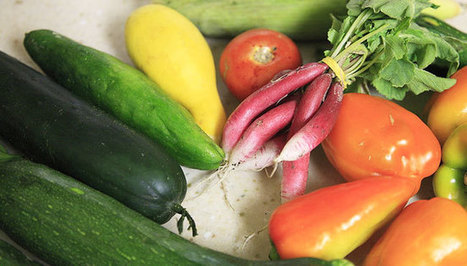 Cuisiner végétarien avec goût et simplicité - La Vie | Végétarisme, alternative alimentaire | Scoop.it