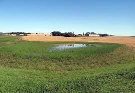 BWSR, NRCS to partner on agricultural wetland mitigation banking program - Sleepy Eye Herald Dispatch | Nature + Economics | Scoop.it