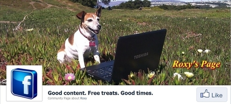 Content Marketing Even a Dog Can Love | Social Media Today | Copywriting & Storytelling | Scoop.it