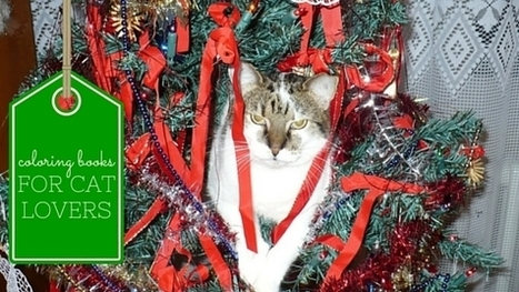 Coloring Books!Christmas Presents Cat Lovers KNEAD This Year | Cats Rule the World | Scoop.it
