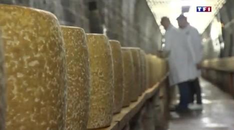 Cantal : dans un ancien tunnel de la SNCF se cache un métier rare | The Voice of Cheese | Scoop.it