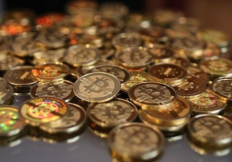 $10: One Perspective On What Bitcoin Will Be Worth In 2014 | Tech and the Future of Integration | Scoop.it