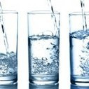 Can water boost brain performance? | Nutrition, Allergen and Ingredient News and Information | Scoop.it