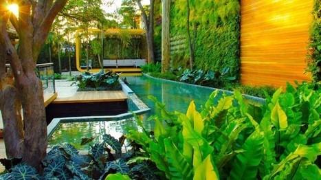 8 maneiras de fazer um jardim vertical | Cultural News, Trends & Opinions | Scoop.it