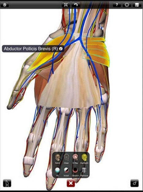 Great Websites to Teach Anatomy of Human Body in 3D ~ Educational Technology and Mobile Learning | Otras materias | Scoop.it