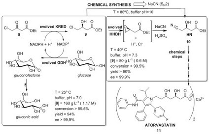 Avid liquid 72 crackrar chafenacmoco sco textbook of medicinal chemistry by sn pandeya fandeluxe Images