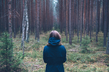 The three kinds of stories every brand needs to tell | Wild Resiliency | Scoop.it