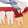 Dentistes à Paris 75015