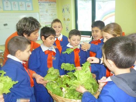 La scuola della terra | Equo solidale e sociale | Scoop.it