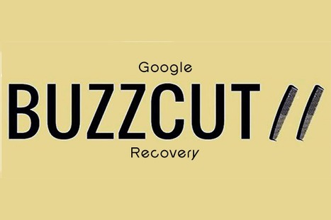 Google Buzzcut Recovery - A Harrowing Tale of SEO & 404s via Curagami | Design Revolution | Scoop.it