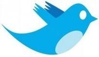 200 millions d'utilisateurs actifs sur Twitter | Social media evolution | Scoop.it