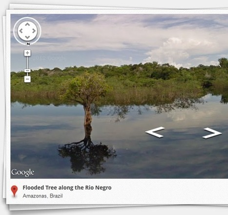 Google Brings Street View To The Amazon Forest & Its Communities | Brazilianisms | Scoop.it
