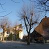 Louvain-la-Neuve au temps des pionniers