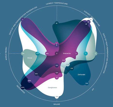 Design Bureau » Feltron's Info-Graphic Wine Label | visual data | Scoop.it