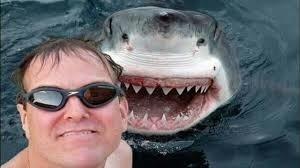 Selfies Have Killed More People Than Sharks This Year   pixels and pictures   Scoop.it