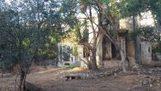 Els jardins de Can Ferrer seran un nou espai verd obert als veïns | #territori | Scoop.it