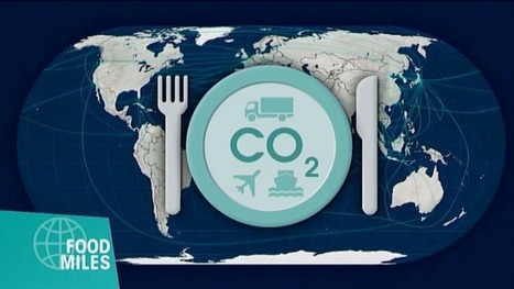 La mondialisation des aliments | Fle gastronomie cuisine | Scoop.it