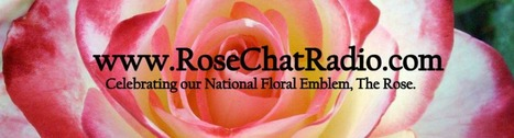Rosechat Radio | Gift Ideas for Rose Growers | Annie Haven | Haven Brand | Scoop.it