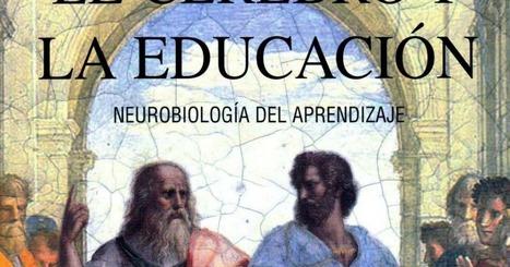 El cerebro y la educacion. Neurobiología del aprendizaje.pdf | #TRIC para los de LETRAS | Scoop.it