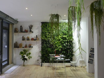 Rambulation : Vertical Gardens.Patrick Blanc. Vision City, Hong ... | Wellington Aquaponics | Scoop.it