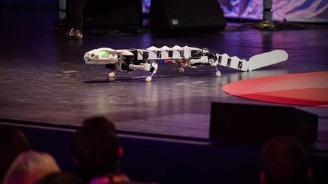 Darwin in the Machine: The E-volution of Robotics - SERIOUS WONDER | Design to Humanise | Scoop.it