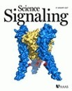Targeting TNFR2, an immune checkpoint stimulator and oncoprotein, is a promising treatment for cancer | Melanoma BRAF Inhibitors Review | Scoop.it