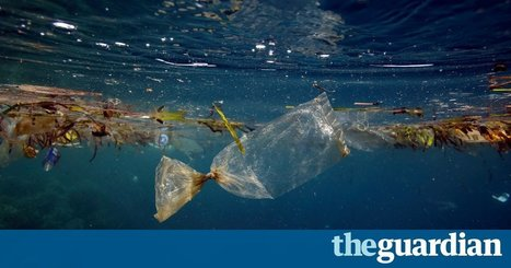 "England's plastic bag usage drops  85% since 5p charge introduced (""free plastic is the culprit"") 