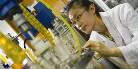 Microalgae Biofuels Market Rapidly Grows | Environmental Sensors | Scoop.it