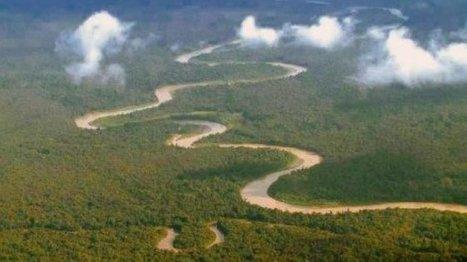 Papouasie Nouvelle-Guinée : la biodiversité du Sepik menacée par les excavatrices   Les colocs du jardin   Scoop.it