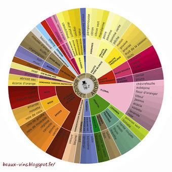 Beaux-vins: L'origine des arômes du vin | Oenotourisme en Entre-deux-Mers | Scoop.it