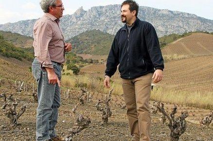 Viticulture : rendre fou d'amour le papillon pour mieux l'éradiquer   Le vin et ses innovations   Scoop.it