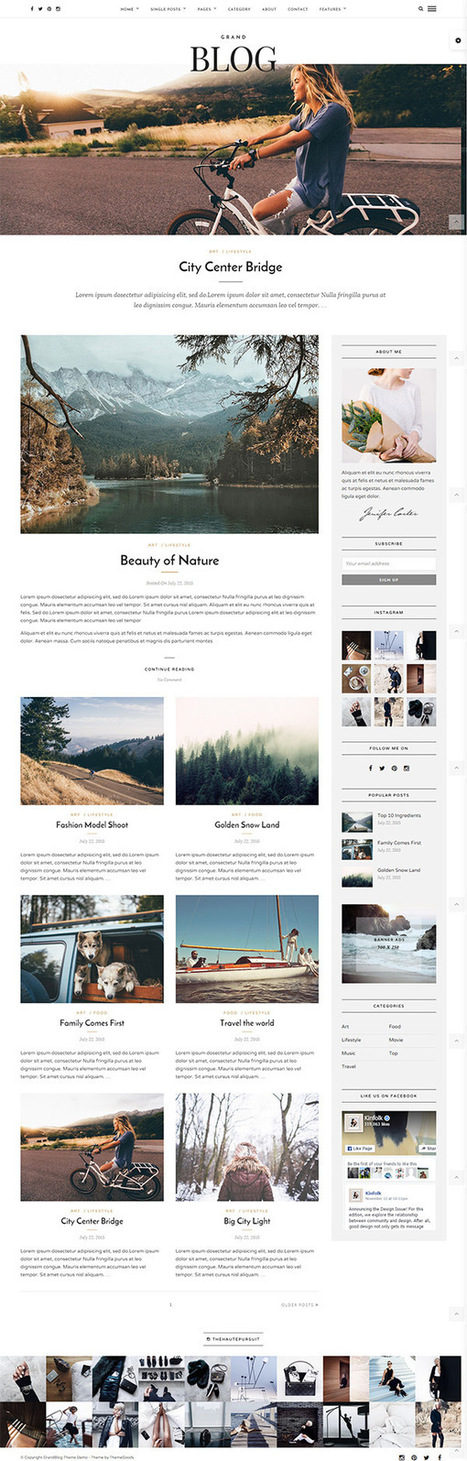 Clean & Modern Responsive WordPress Blog Theme | Design Slots | Scoop.it