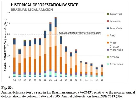 Bad news: Brazil is losing huge chunks of Amazon rainforest again | Science and Nature | Scoop.it