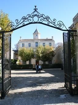 Domaine Sainte Rose to make wine in Kent | Autour du vin | Scoop.it