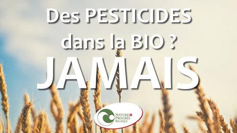 Des pesticides dans la bio, jamais ! | Des 4 coins du monde | Scoop.it