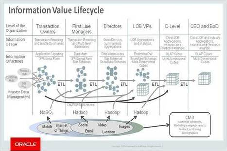 Solving The Polyglot Persistence Puzzle   Defining The Information Value  Lifecycle (Enterprise Architecture At Oracle)