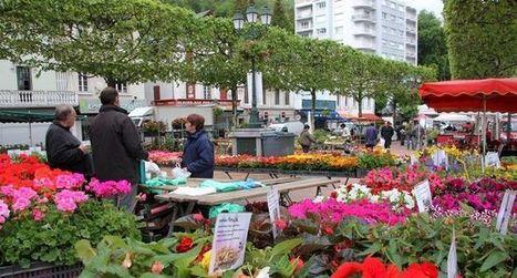 Une ville en fleurs   Revue de presse de la Vallée d'Argelès-gazost   Scoop.it