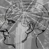 Media Mindfulness