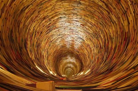 Edition scientifique : quand la bibliométrie oriente les chercheurs | Sciences de l'Information | Scoop.it
