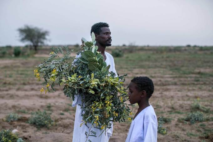 One of Africa's Most Fertile Lands Is Struggling to Feed Its Own People