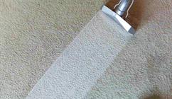 carpet cleaning in manassas va
