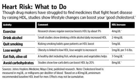 New Rules for Boosting Good Cholesterol | Heart and Vascular Health | Scoop.it