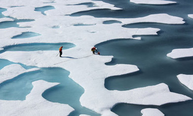 Arctic faces further threat from ocean acidification - The Guardian | Messenger for mother Earth | Scoop.it