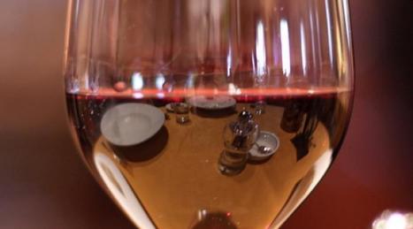 Comment le vin est devenu l'objet d'une culture élitiste   oenologie en pays viennois   Scoop.it