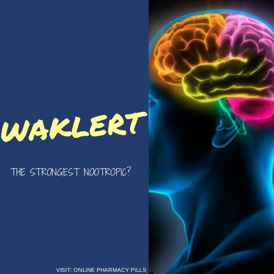 Waklert The Strongest Nootropic Drug For Your