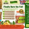Garcinia Diet And Weight Loss