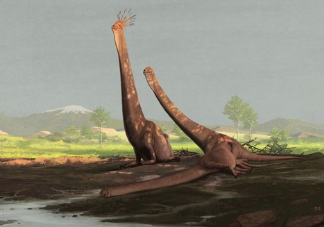 Science Meets Speculation in All Your Yesterdays | Paleontology News | Scoop.it